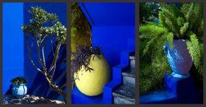 Morocco-Marrakech-Jardin-Majorelle083-A3print.jpg